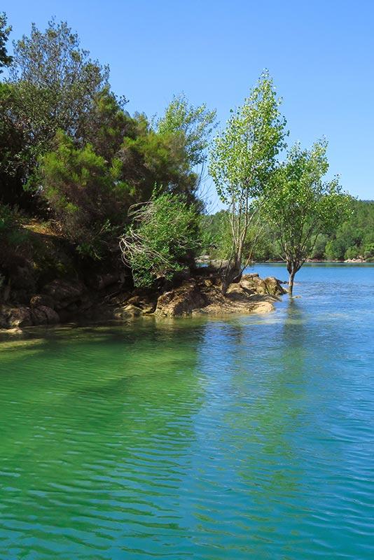 plage-lac-saint-cassien